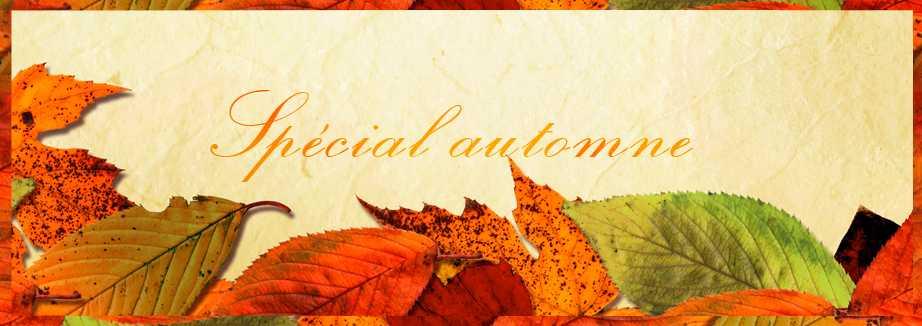 bannière-automne